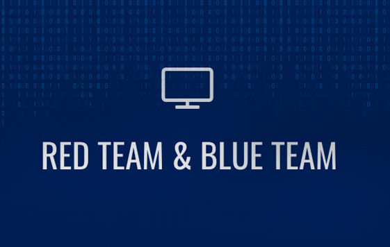 blue team y read team